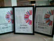 South and South East In Bloom Award Ceremony